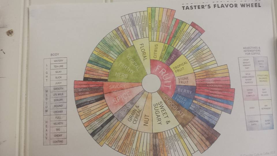 Check out all the flavours in coffee!